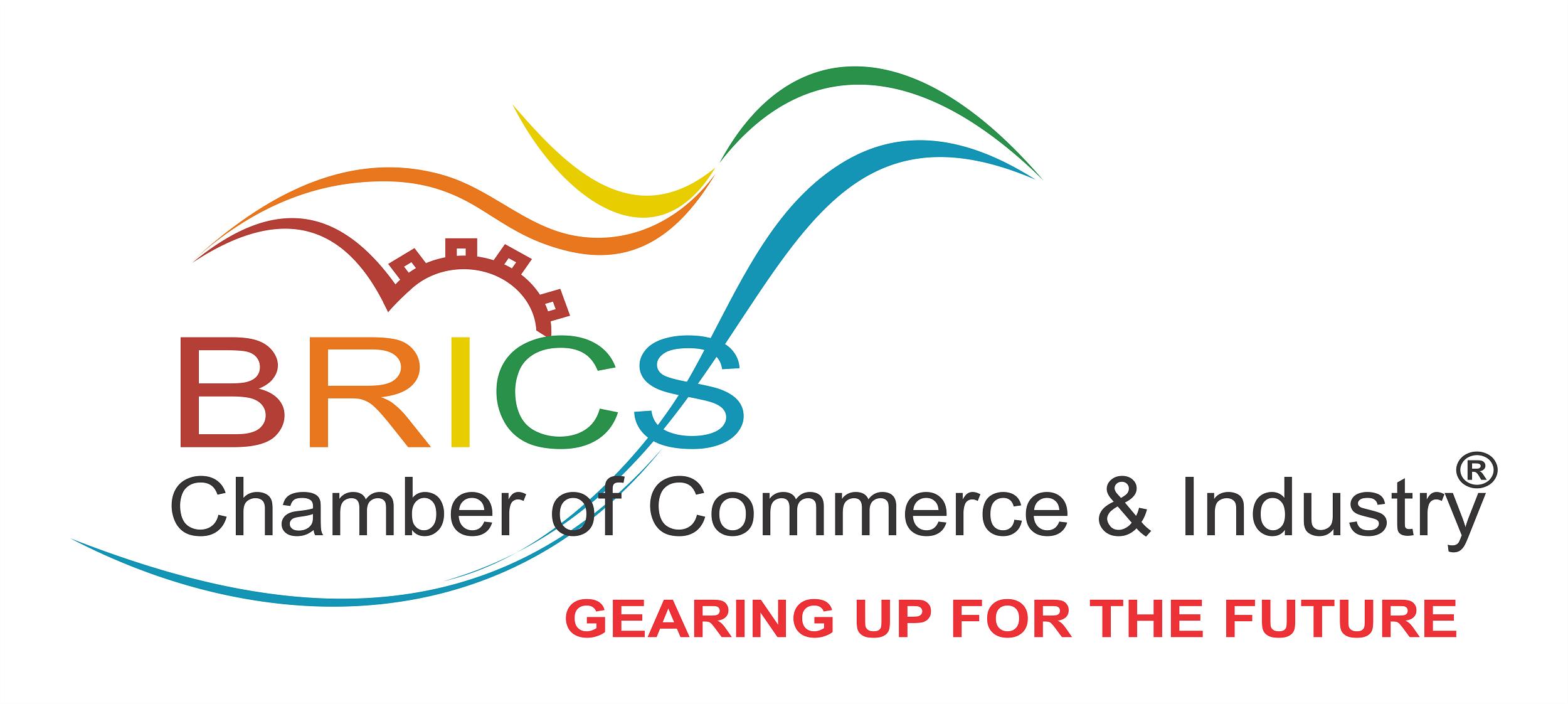 BRICS CCI Logo